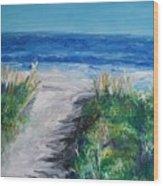 Jersey Shore Dunes  Wood Print
