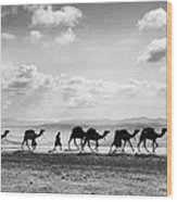 Jerusalem: Caravan, C1918 Wood Print