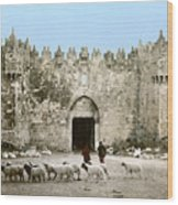 Jerusalem: Damascus Gate Wood Print