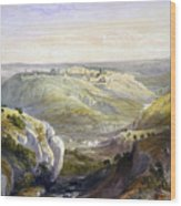 Jerusalem From The South Wood Print