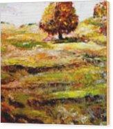 Jerusalem Hills Wood Print