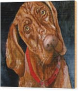 Jesse The Vizsla Wood Print