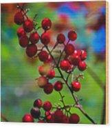 Jessies Berries Wood Print