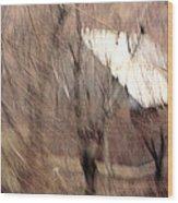 Jest Wood Print