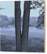 Jesus Christ Tree Cyan Wood Print