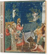 Jesus Entering Jerusalem Wood Print
