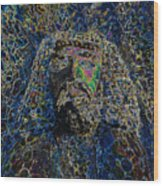 Jesus Of Nazareth Wood Print
