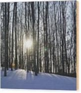 Jesyca's View Wood Print