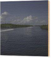 Jet Through The Mangroves Wood Print