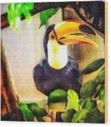 Jewel Of The Amazon Toco Toucan  Wood Print