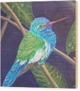 Jewel Of The Skies Wood Print