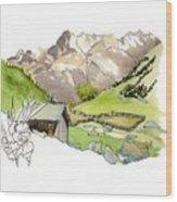 High Pastures,   Col De La Cayolle Wood Print