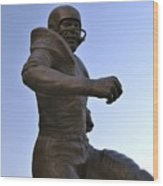 The Jim Brown Statue, Cleveland Browns Nfl Football Club, Cleveland, Ohio, Usa Wood Print