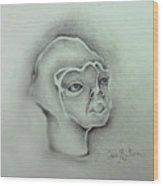 Jim The Man Born Without Hair Follicles Alopecia Universalis  Wood Print