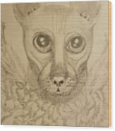 Jinx The Sphynx Wood Print