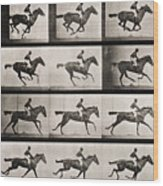 Jockey On A Galloping Horse Wood Print