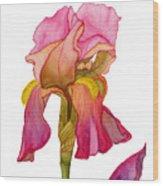 Jody's Iris Wood Print