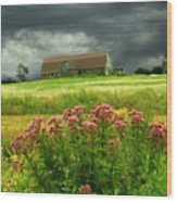 Joe Pye Weed And Barn Wood Print