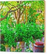 Joe T Garcias Gardens Wood Print