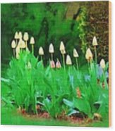 Joe's Tulips Wood Print