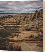 Joggins Fossil Cliffs Wood Print
