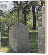 John And Priscilla Alden Gravesite  Wood Print