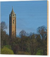 John Cabot Tower Wood Print