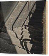 Johnny's In The Basement Wood Print by Odd Jeppesen