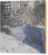 Johnson Vermont In Spring Snow Storm Wood Print