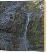 Jones Falls Wood Print