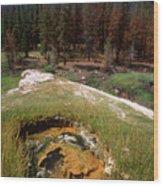 Jordan Hot Springs Wood Print