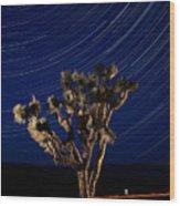 Joshua Tree And Star Trails Wood Print