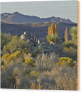 Joshua Tree National Park In California Wood Print by Christine Till