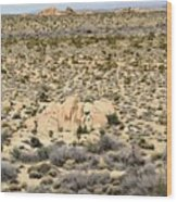 Joshua Tree National Park - Joshua Tree, Ca Wood Print