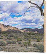 Joshua Tree National Park Landscape Wood Print