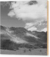 Joshua Tree National Park Tumbleweeds Wood Print