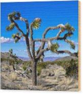 Joshua Tree National Park Winter's Day Wood Print