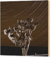 Joshua Tree Night Lights Death Valley Bw Wood Print