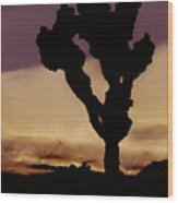 Joshua Tree Silo At Sunset Wood Print
