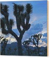 Joshua Tree Sunset Skies Wood Print