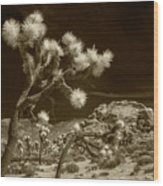 Joshua Trees And Boulders In Infrared Sepia Tone Wood Print