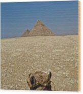 Journey Into The Desert Wood Print