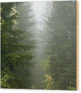 Journey Through The Fog Wood Print
