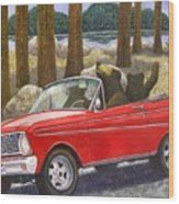 Joy Ride Wood Print