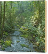 Joyce Kilmer Memorial Forest Wood Print