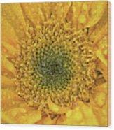 Joyful Color Nature Photograph Wood Print
