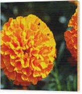 Joyful Orange Floral Lace Wood Print