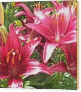 Joyful Red Lillies Wood Print