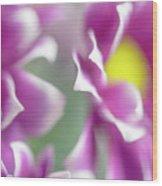 Joyful Sisters. Gentle Floral Macro Wood Print