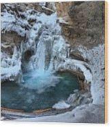 Johnston Canyon Winter Delight Wood Print